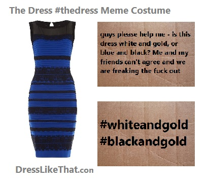 the dress meme costume ideas